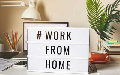 High Paying Work from Home Professions